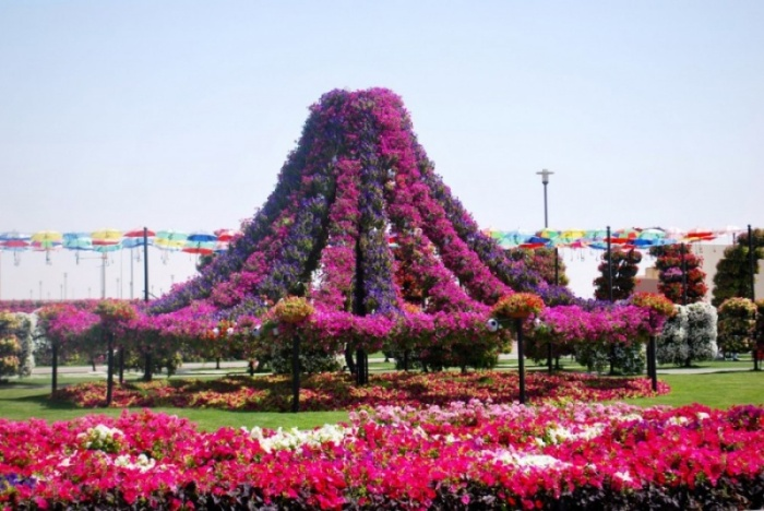 Уникальный сад в Дубае удивит даже самых придирчивых