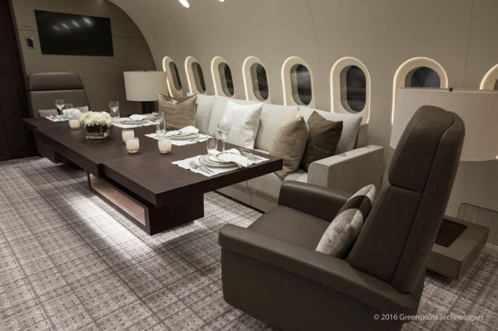 Boeing 787-8 Dreamliner компании Deer Jet - один из самых роскошных самолетов в мире