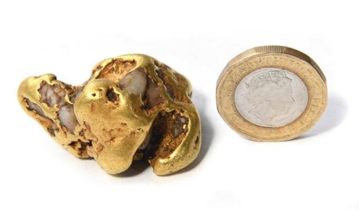 В Шотландии найден золотой самородок стоимостью £50 000