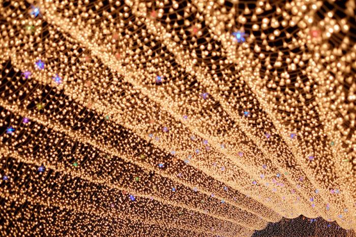 Японский световой фестиваль