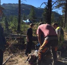 Жажда жизни: мужик 4 дня полз по лесу со сломанными ногами