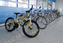 Поставщики велосипедов: как только наступит теплая погода, в магазинах возникнет дефицит