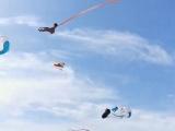 3-летняя девочка взмыла на 30 м в воздух на воздушном змее