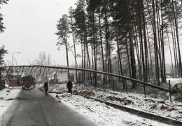 В Эстонии из-за шторма обесточены свыше 3100 домов, Таллиннский аэропорт не принимал самолеты
