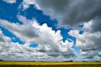 В начале августа обещают дожди, во второй половине месяца воздух может прогреться до +30