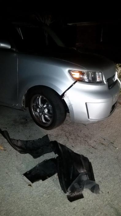 Кто покусал автомобиль?