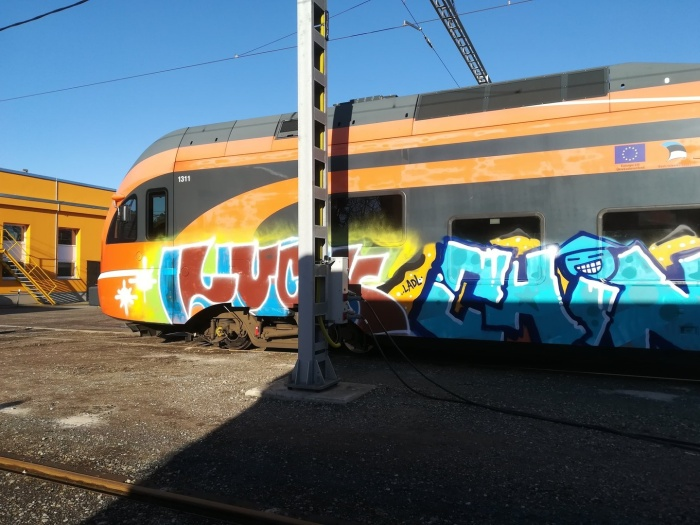 Полиция разыскивает разрисовавших поезд в Рийзипере хулиганов