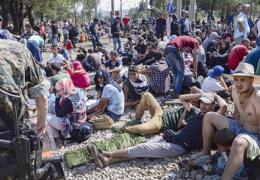 В ближайшее время Эстония примет из Греции первых военных беженцев