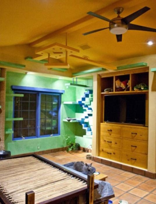 Отличная комната для котов