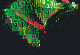 Эстония и США подтвердили желание продолжать сотрудничество в сфере кибербезопасности