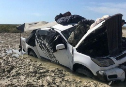 Крокодилы четыре дня караулили рыбаков на джипе, которые увязли в болоте