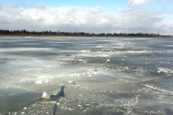 Спасательный департамент просит предупредить детей о рисках, связанных с тонким льдом
