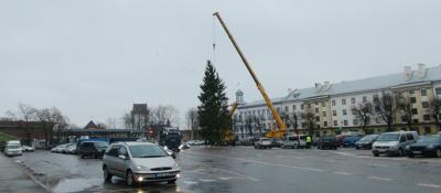 Видео. На Петровской площади ставят елку