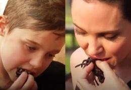 Шокирован ВИДЕО, как Анджелина Джоли накормила своих детей пауками