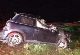 Автомобиль после столкновения с лосем