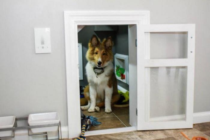 Уютный собачий домик