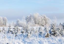 В среду в Эстонии ударят морозы до -25 градусов