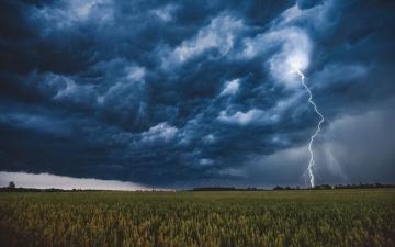 В выходные – дожди и грозы, начало недели будет ветреным и прохладным