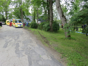 В ДТП на ралли в Кохила пострадали два ребенка из публики