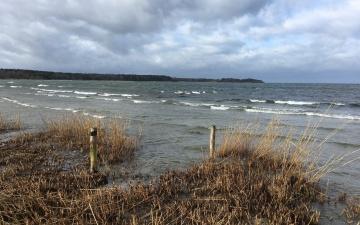 В субботу на острова и западное побережье Эстонии обрушится сильный шторм