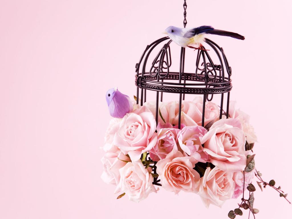 Картинки с птицами и цветами 5