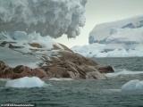 У берегов Антарктиды нашли новый остров