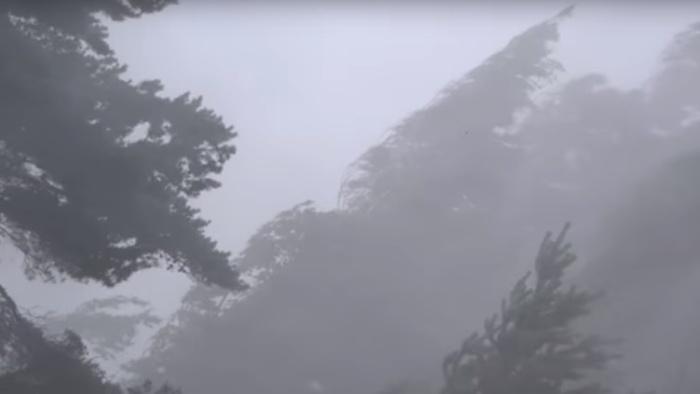 Видео: шторм бушует на юге и востоке Эстонии