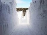 30 фотографий про то, как канадцы справляются со снежным армагедеццом