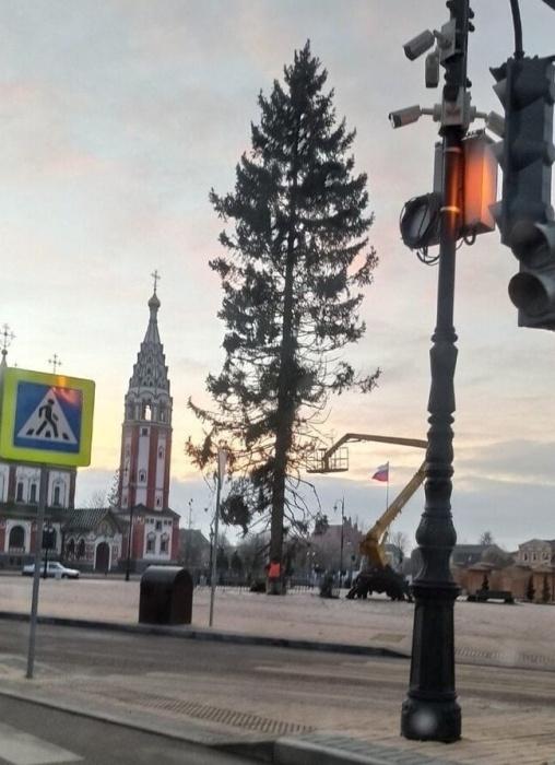 """""""Какой год - такая елка"""": в российских городах жалуются на зеленых новогодних калек"""