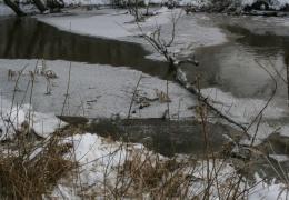 Переплывший границу Эстонии нелегал умер от переохлаждения