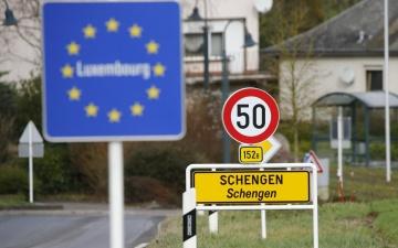 Арестованному в Нарве за превышение скорости российскому туристу закрыли на год въезд в Шенген