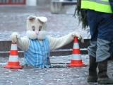 ФОТО: на Ратушной площади в Тарту установили рождественскую ель