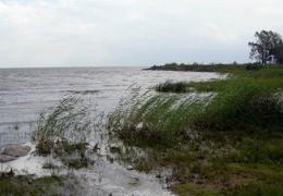 На Чудском озере спасли пожилого серфингиста