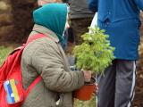На Ореховой горке во время субботника посадили 200 деревьев