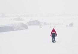 Снегопады в Германии и Австрии унесли жизни 9 человек