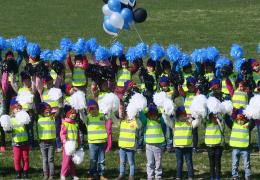 Нарве состоялся флешмоб в честь грядущего юбилея Эстонии