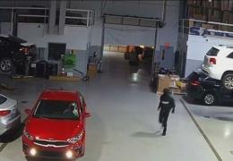 Массовый угон нескольких автомобилей за считанные минуты из дилерского центра в Иллинойсе