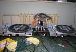 FruIT-X - DJ Кот. BrokenNoise Project.