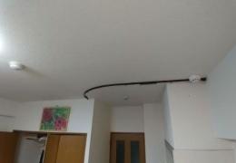 Неприятная находка в арендованном доме