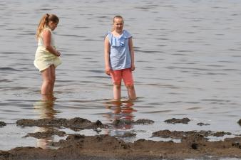 Власти Нарвы не рекомендуют купаться на Липовке, красный флаг останется висеть до конца лета