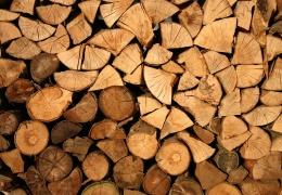 Госуправление лесами Эстонии продало дров почти на девять миллионов евро