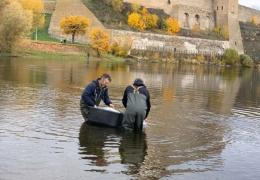 Ученые до 2024 года изучат рыбные запасы реки Нарва