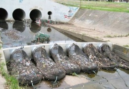 В Австралии водоемы защищают от мусора при помощи специальных сетей
