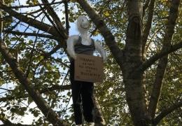 ФОТО: повешенная на дерево в Нарве кукла привлекла внимание полиции