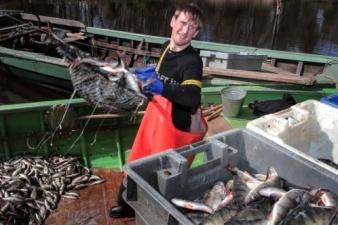 Эстония ищет пути обхода российского эмбарго - хочет отправлять рыбу в Россию через Белоруссию