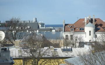 В Эстонии среди подростков распространяется опасное увлечение: делать селфи на крышах