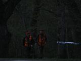 В Хааберсти бродила медведица с медвежонком, масштабная операция по поимке приостановлена