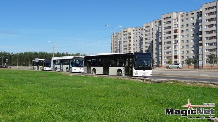 Для нарвских школьников общественный транспорт сделают бесплатным