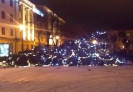 На покупку рождественской ели Нарва выделила 9000 евро