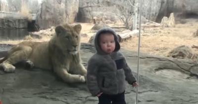 Дети отжигают в зоопарке